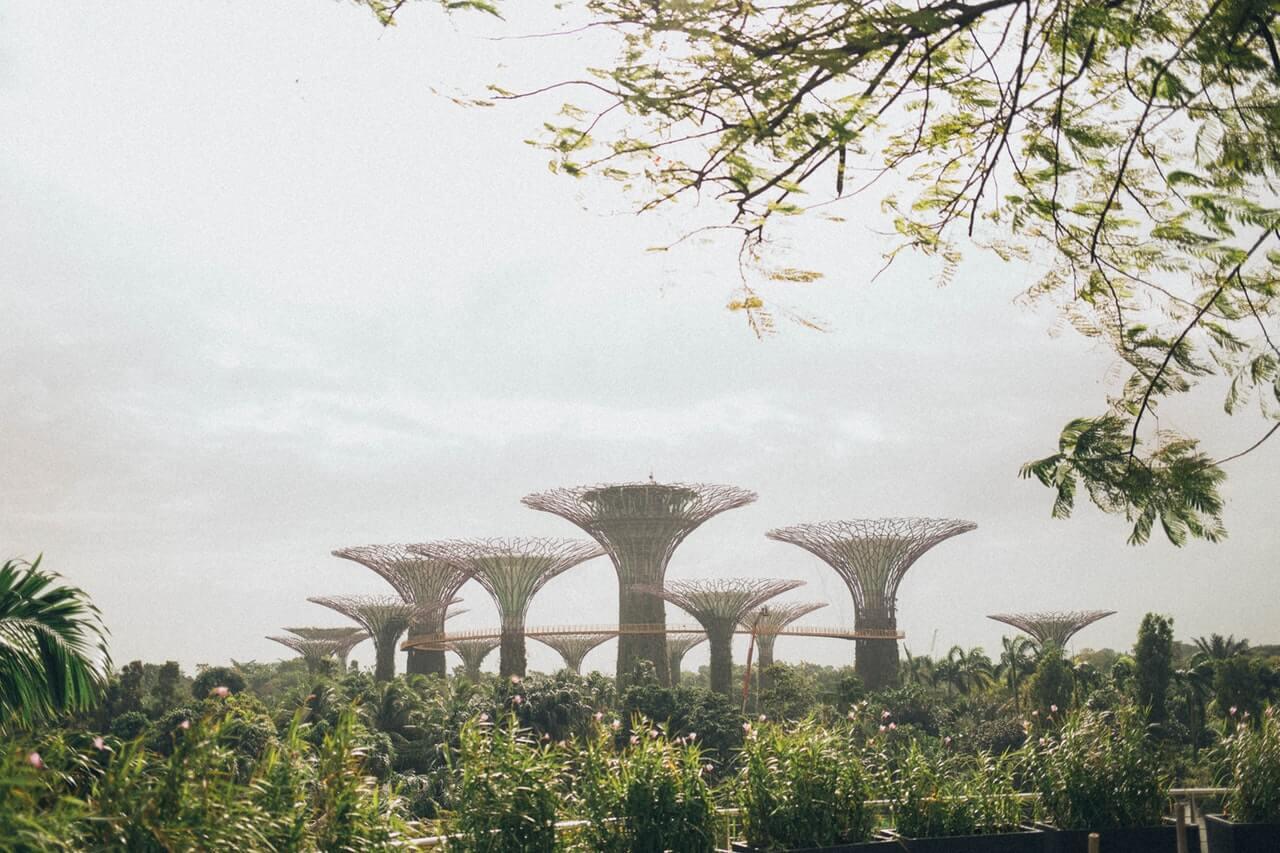 Een luchtfoto van Gardens by The Bay middenin Singapore.